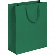 Пакет Ample M, зеленый